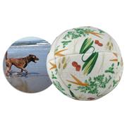Pet Ball