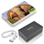 Photo Tablet Power Bank (Stock)